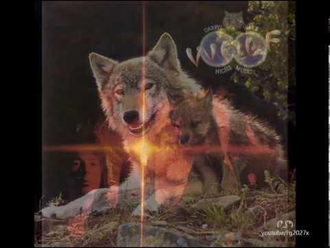 Darryl Way's WOLF – Canis Lupus (1973) FULL ALBUM! ☝😉