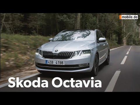 KurzCheck Mobile.de | Skoda Octavia