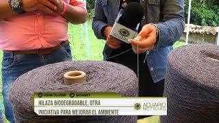 Hilaza biodegradable, otra iniciativa para mejorar el ambiente