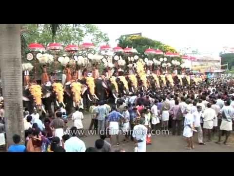 Vibrating rhythm of melam : Thrissur Pooram festival