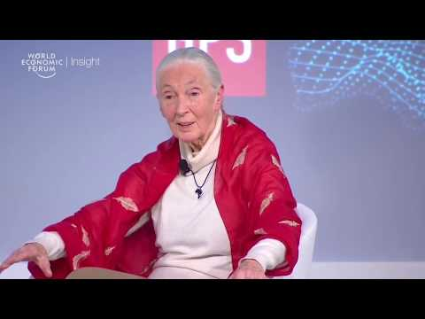 Jane Goodall: I Do Not Believe In Aggressive Activism | Forum Insight