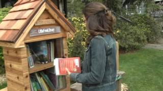 Little library is novel idea