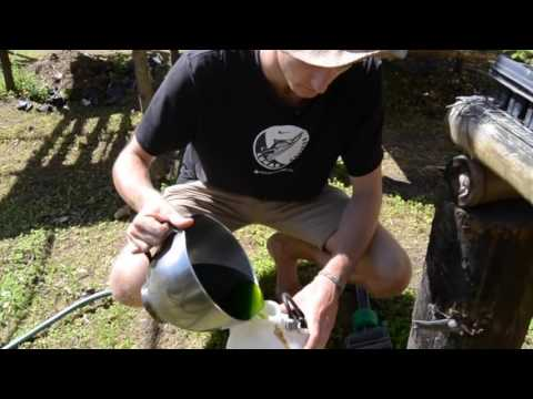 How to make Moringa Fertilizer