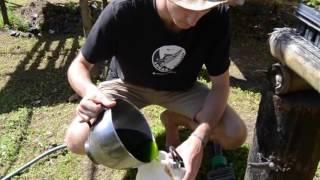 How to make Moringa Fertilizer