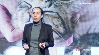 Understanding Cat Behavior: Dr. Sandra Lyn