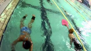 水泳指導者講習 ドリル練習.