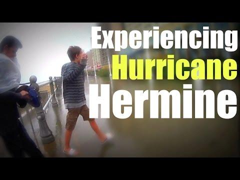 Hurricane Hermine Virginia Beach