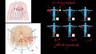 Jak w prosty sposób ZROZUMIEĆ odprowadzenia EKG?