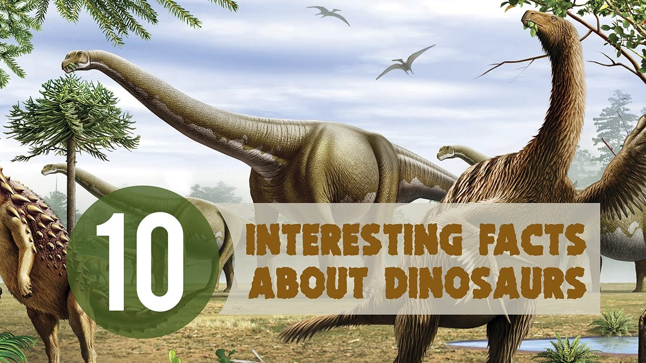 10 Interesting Facts About Dinosaurs