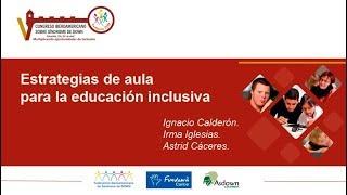 Panel Estrategias de aula para la educación inclusiva