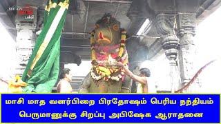 மாசி மாத வளர்பிறை பிரதோஷ பெரிய நந்தியம் பெருமானுக்கு சிறப்பு அபிஷேக ஆராதனை | Thiruvannamalai