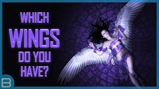 What Type Of Wings Do You Have?