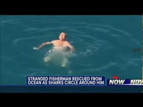 Người đàn ông khỏa thân giữa đàn cá mập