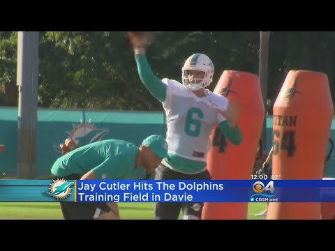 Jay Cutler Shows Off Strong Arm During First Practice With Miami Dolphins