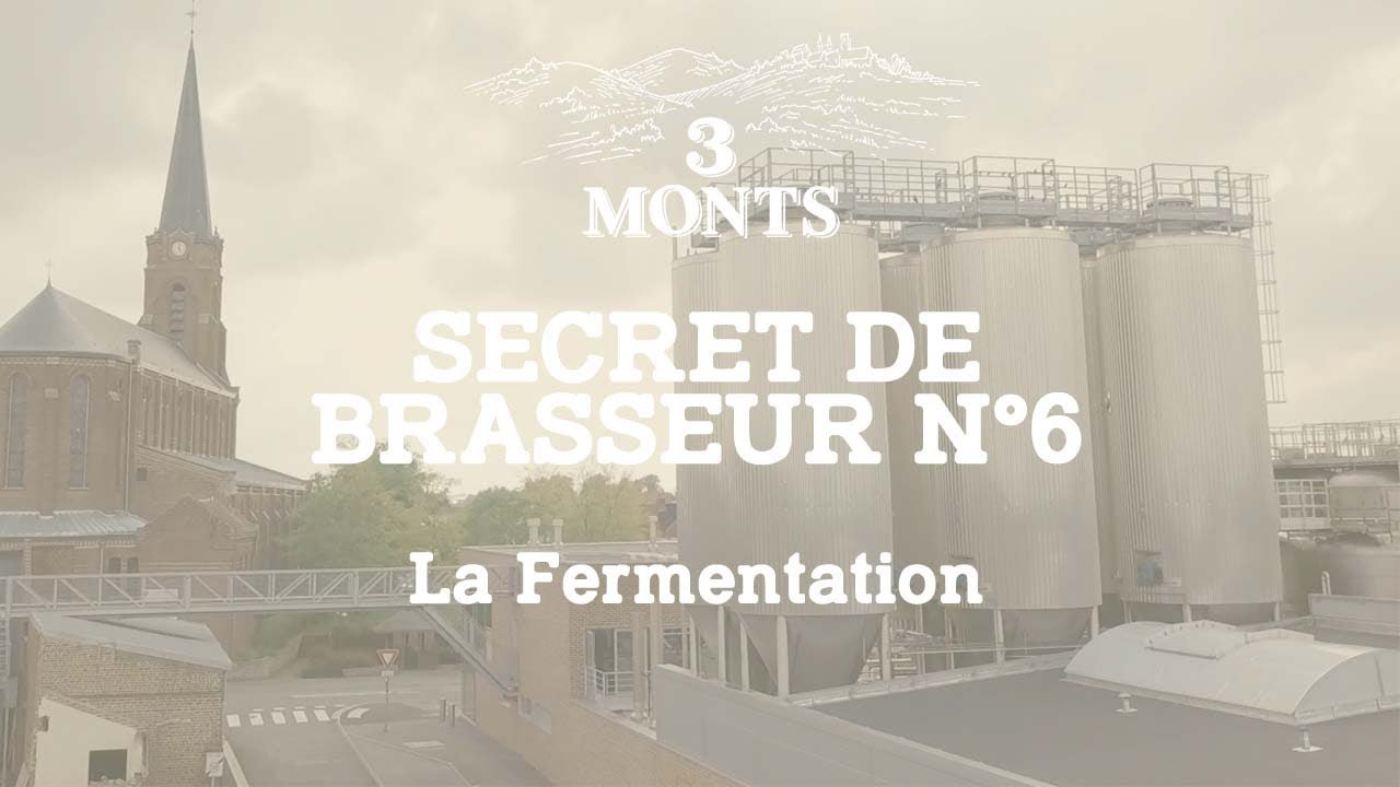 3 MONTS | Secret de Brasseur 6️⃣ La Fermentation
