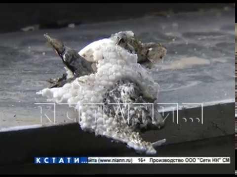 Вечный огонь в вечный костер превратили дети в Заволжье