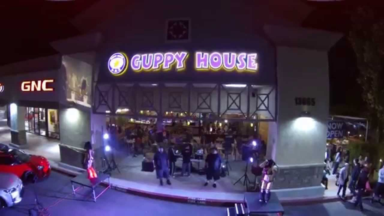 Guppy House Chino Hills Grand Opening