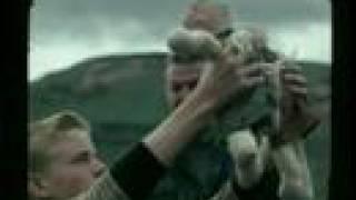 Viðrar vel til loftárása [Official Video]