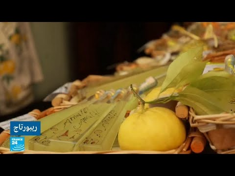 الليمون.. القلب النابض لمدينة أمالفي الإيطالية  - نشر قبل 2 ساعة