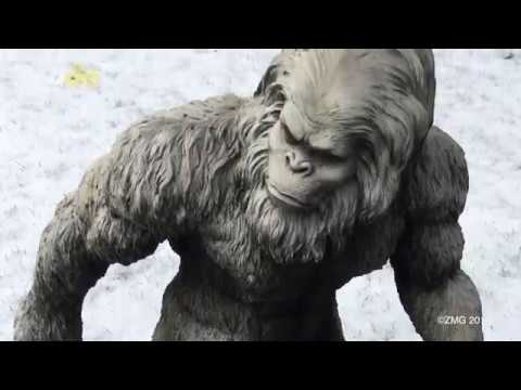 Woman Sees 'Bigfoot', Sues California for Not Believing Her