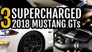 THREE 2018 Supercharged Mustang GTs on the DYNO! Vortech | Procharger | 93 | E85