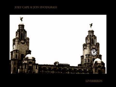 Jon Snodgrass - Losing Everyone