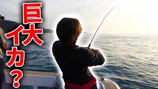 #1 前日にアオリイカが70杯釣れた海でエギングをしてみると・・・