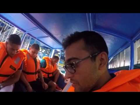 Dubai Mall Aquarium - Glass Bottom Boat Ride