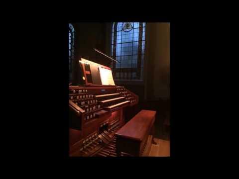 Acid Rain Liquid Tension Experiment  on Church Organ performed by Kristina Shtegman