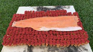 ปลาแซลมอน-vs-ไม้ขีด-10000-ก้าน