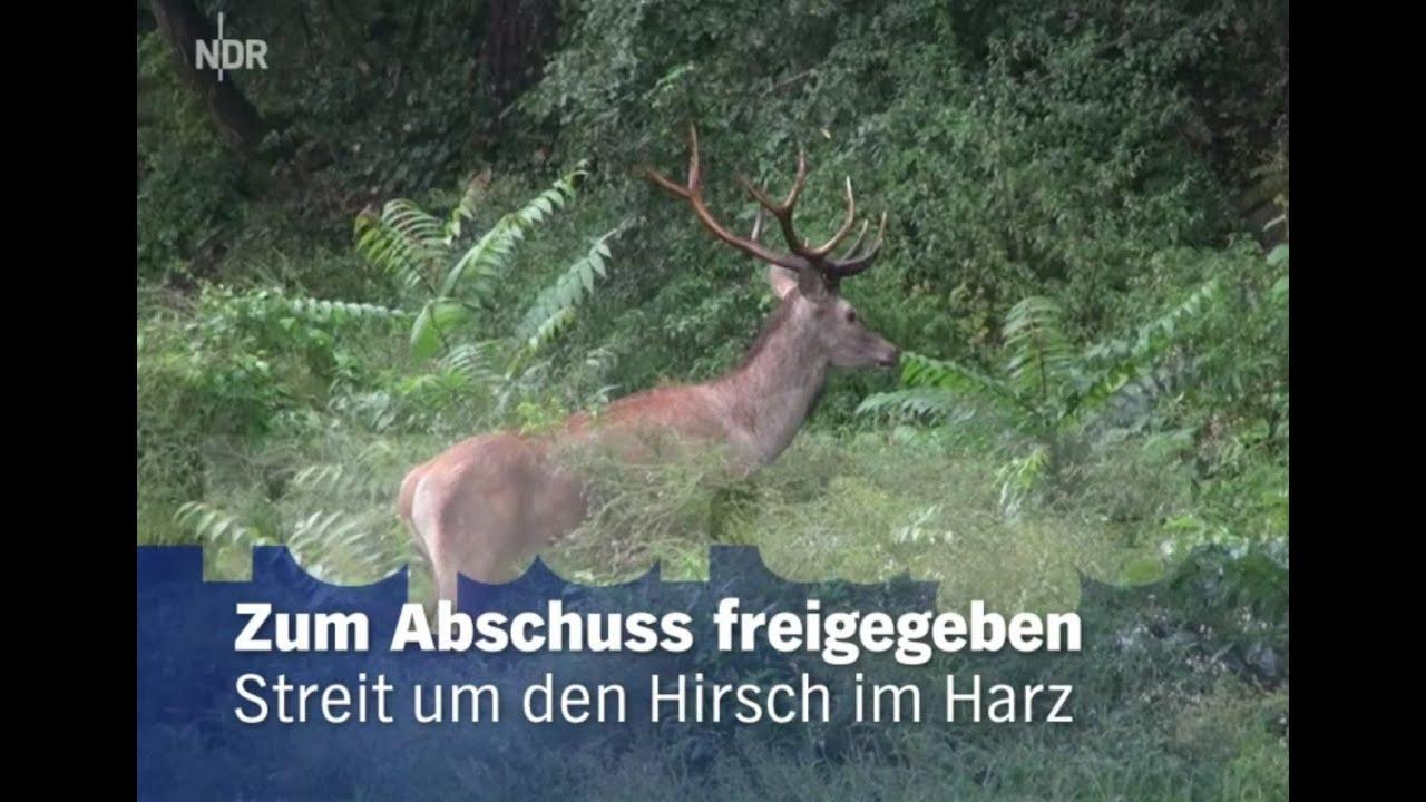Harz Doku