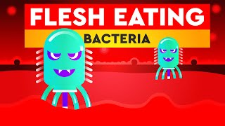 What Is Flesh Eating Bacteria