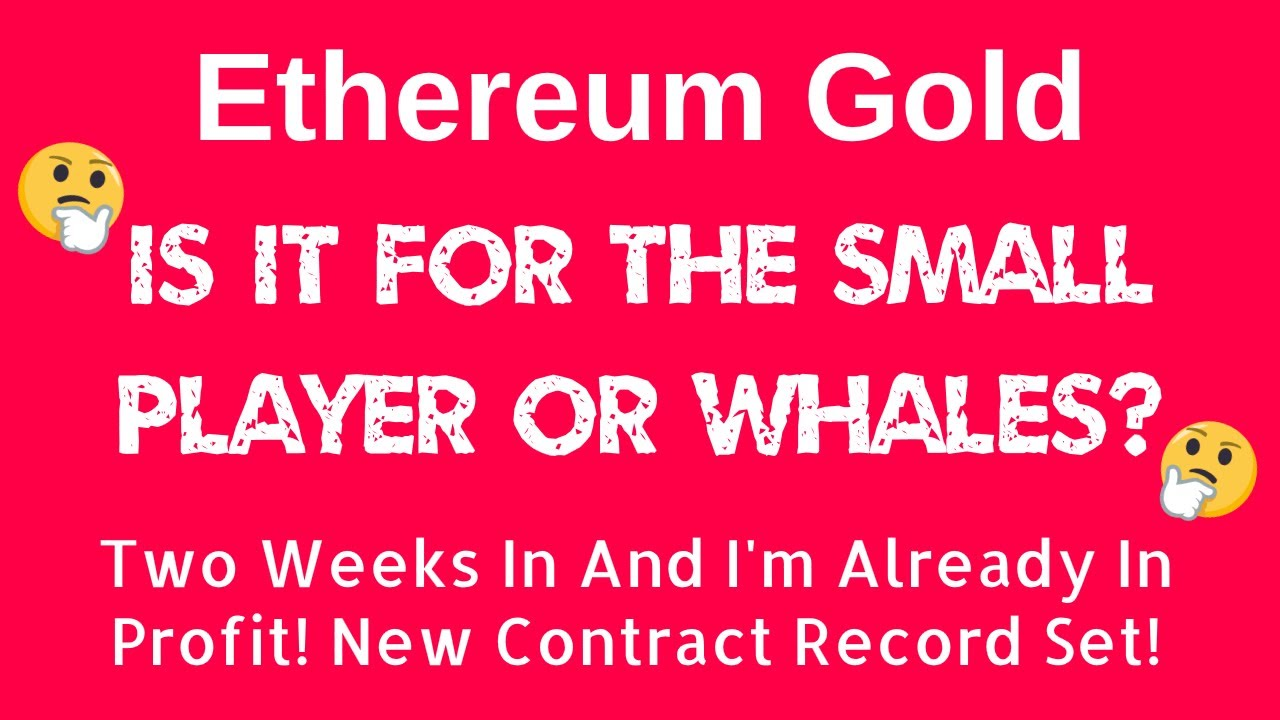 ETHEREUM GOLD - Is It For The Small Player Or Whales? Update After Two Weeks In! #ethereumgold #IND