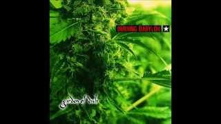 Burning Babylon - Garden Of Dub [album]