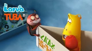 Larva Terbaru New Season 2 | Episodes Stop, Freeze !  | Larva 2018 Full Movie - Stafaband