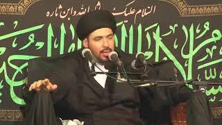 يوم الإمام المهدي عجل الله فرجه يوم التزاوج بين العلم والعبادة - السيد منير الخباز