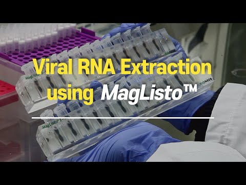 Viral Rna Extraction For Testing Covid 19 Using Maglisto Youtube