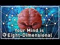 Your Mind Is Eight-Dimensional - Your Br