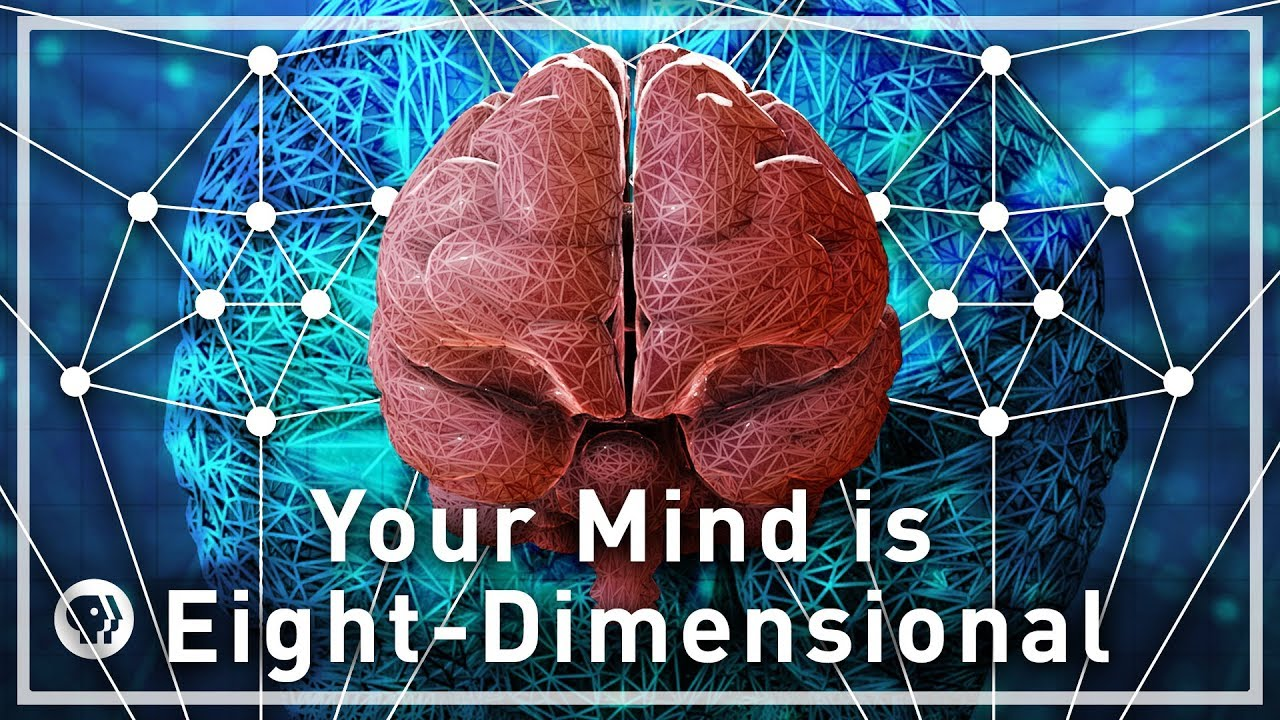Your Mind Is Eight-Dimensional - Your Brain as Math Part 3 | Infinite Series