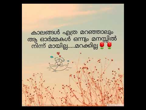 School Life Memoriesheart Touching Malayalam Video Youtube