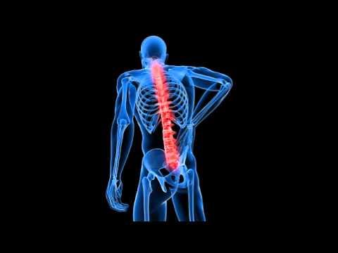 hqdefault - Back Pain Relief Using Antibiotics