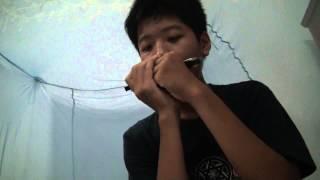 iridescent harmonica