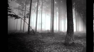 Giuseppe Visciano   Female Orgasm (Original Mix)(Dj Flasher Remix)