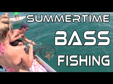 Summertime Bass Fishing - Chasing Lake St. Clair Smallmouth!