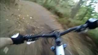 Best of Swinley Forest Mountain Bike RED route - Toshiba Camileo X-Sports