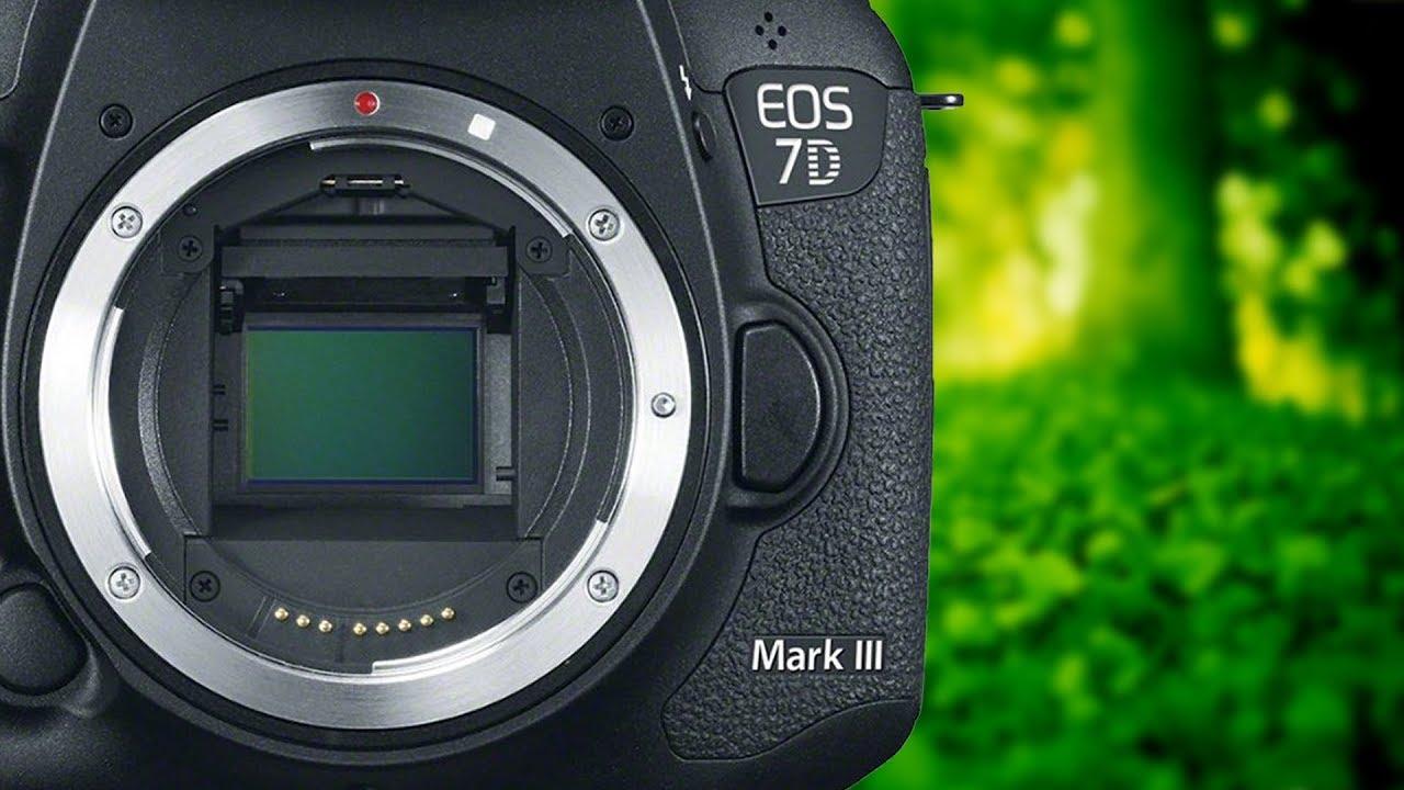 Canon 7D Mark III - Specs, Announcement & Release Date