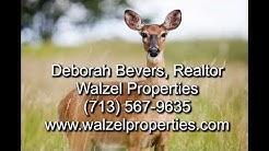 1.4 acre Lot for Sale, Willis TX