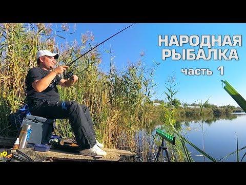 Ловим рыбу на