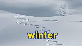 겨울풍경 - winter 겨울이미지
