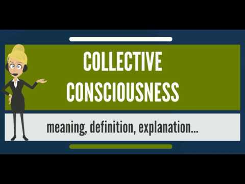 What is COLLECTIVE CONSCIOUSNESS? What does COLLECTIVE CONSCIOUSNESS mean?